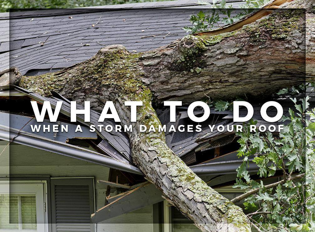 Affordable Roofing Systems Tampa If Storm Damaged Roof